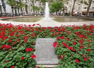 Bowling Green Roses & Fountain