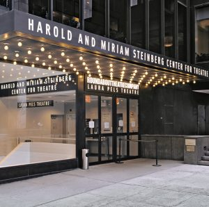Harold-and-Miriam-Steinberg-Center