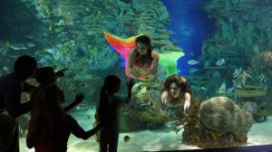 Mermaids with Kids