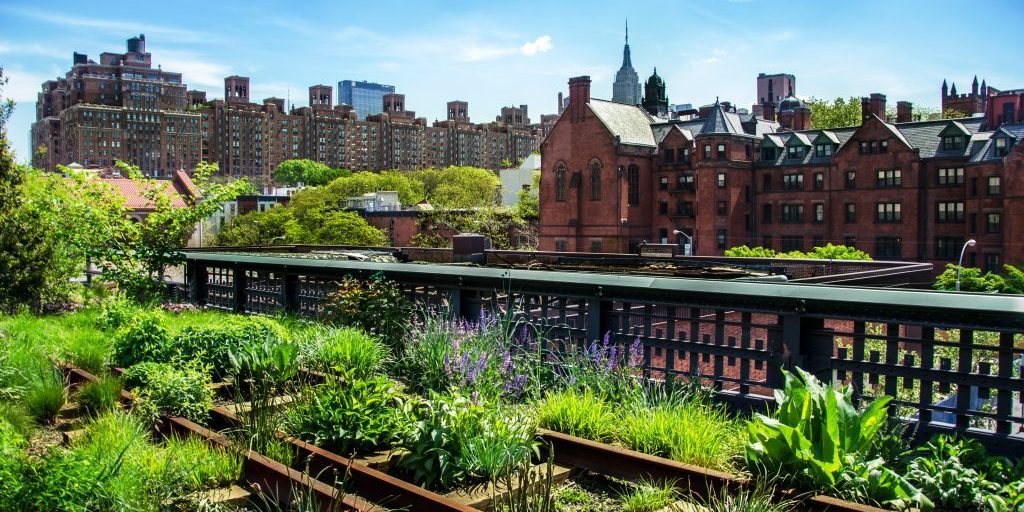 A photo of Highline Park, NYC.