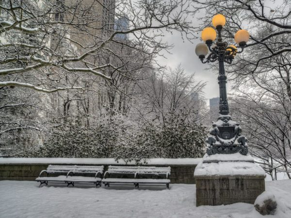 A photo of snow in Central Park New York.