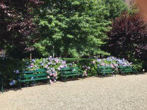 Gramercy Park Flowers