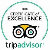 Trip advisor 2018
